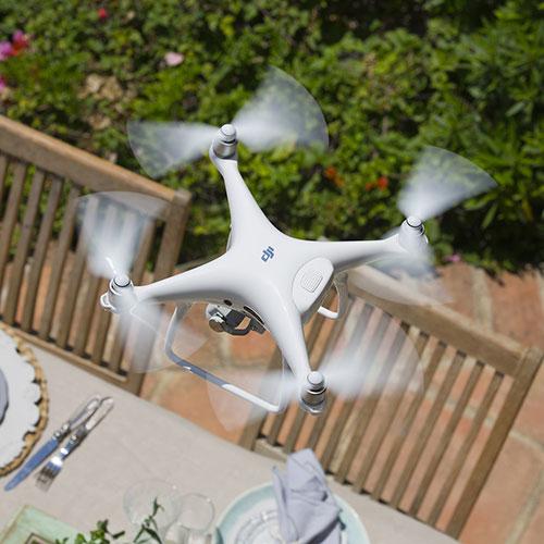 Drone-cat-2